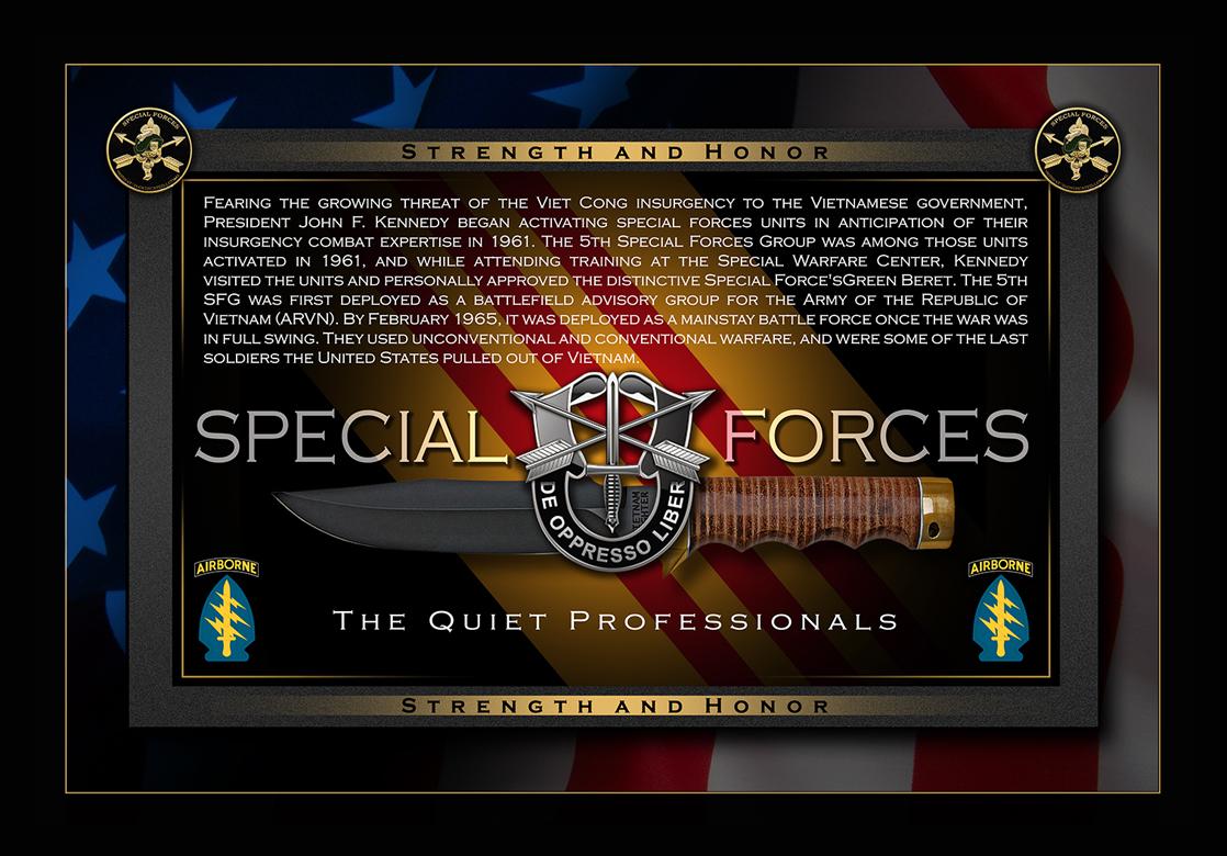 The Quiet Professionals