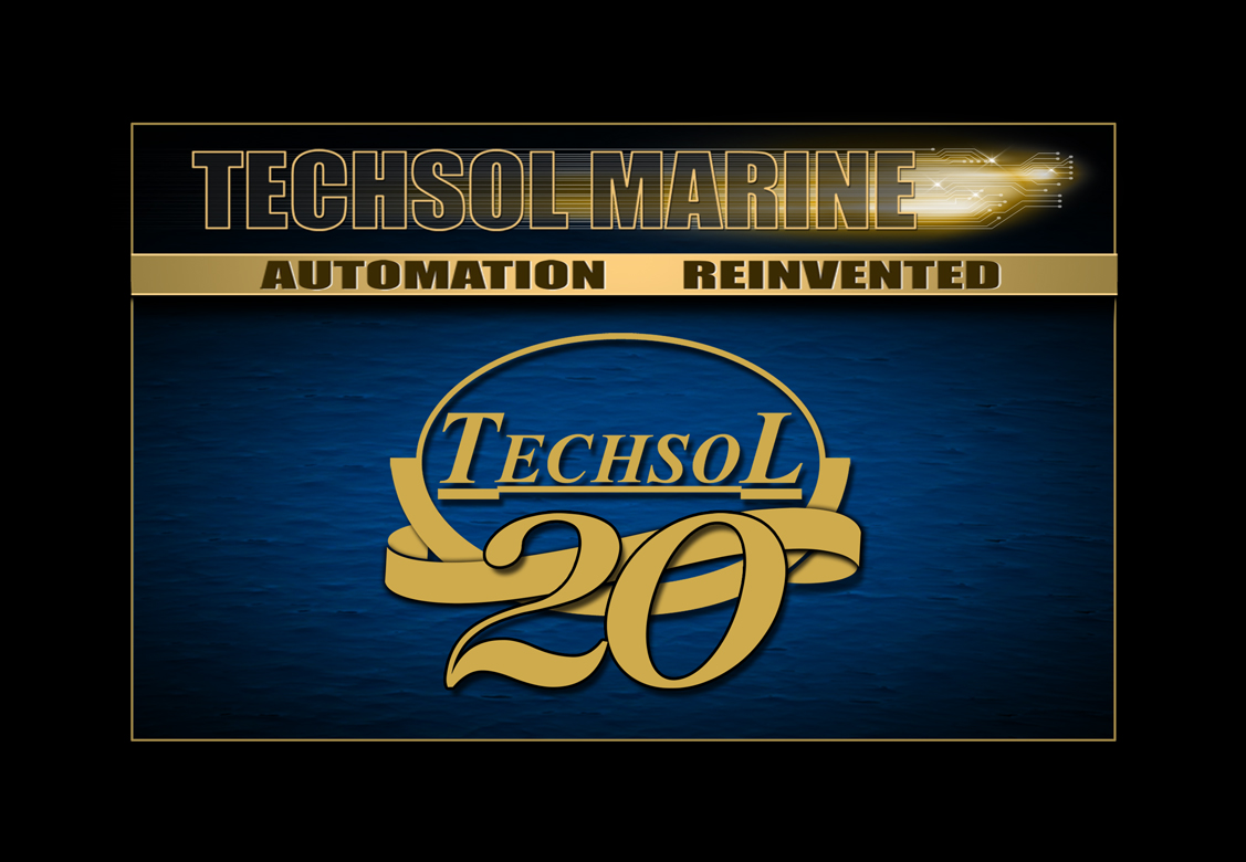 Techsol 20th Anniversary Logo